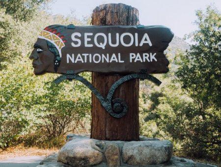 Guía del Parque Nacional Sequoia